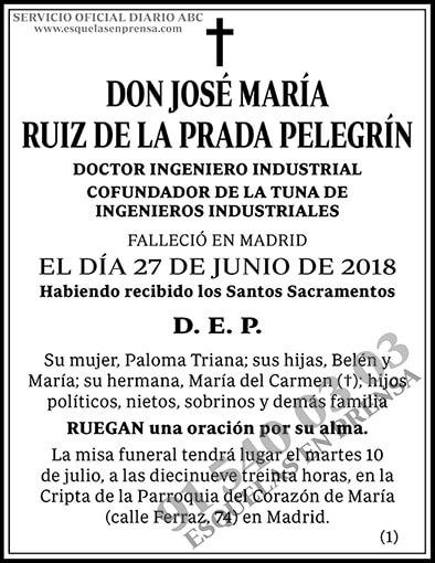 José María Ruiz de la Prada Pelegrín